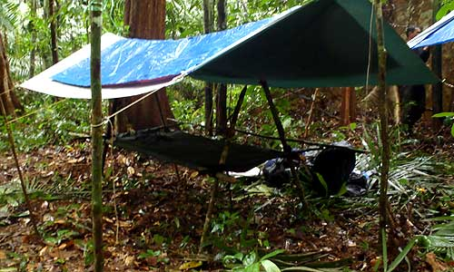 ments rss hammocks   reviewed and revisited   junglecraft  rh   junglecraft   my