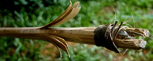 bamboo_arrow